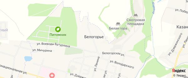 Карта села Белогорья в Белгородской области с улицами и номерами домов