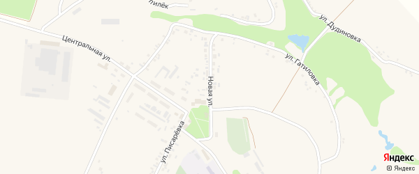 Новая улица на карте села Поповки с номерами домов