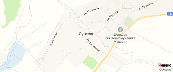 Карта села Сурково в Белгородской области с улицами и номерами домов