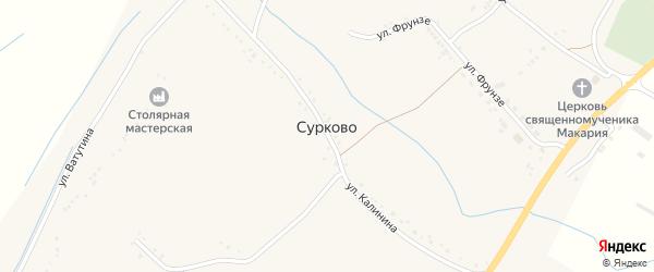 Улица Калинина на карте села Сурково с номерами домов
