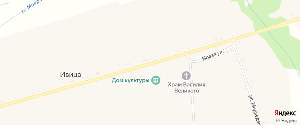 Центральная улица на карте села Ивицы с номерами домов