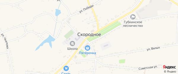 Переулок Чкалова на карте Скородного села с номерами домов