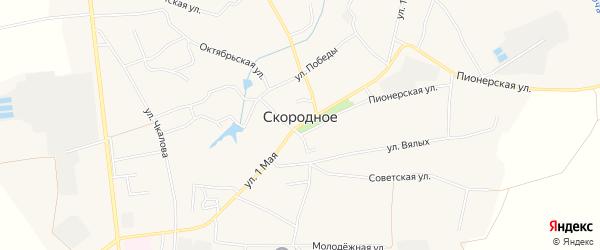 Карта Скородного села в Белгородской области с улицами и номерами домов