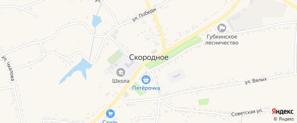 Улица Д.Бедного на карте Скородного села с номерами домов