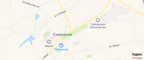 1 Мая улица на карте Скородного села с номерами домов