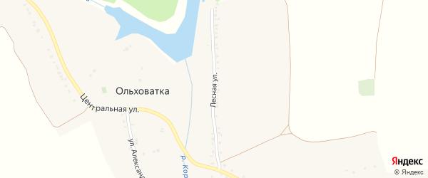 Лесная улица на карте села Ольховатки с номерами домов