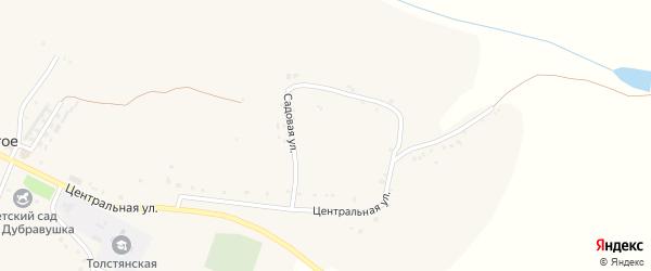 Березовая улица на карте Толстого села с номерами домов