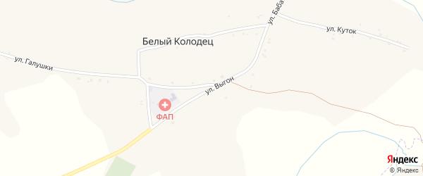 Улица Выгон на карте села Белого Колодца с номерами домов