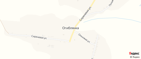 Полевая улица на карте села Огиблянки с номерами домов