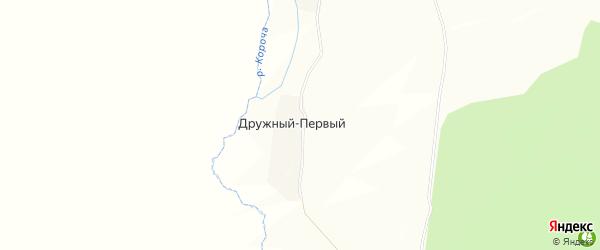 Карта Дружного Первого хутора в Белгородской области с улицами и номерами домов