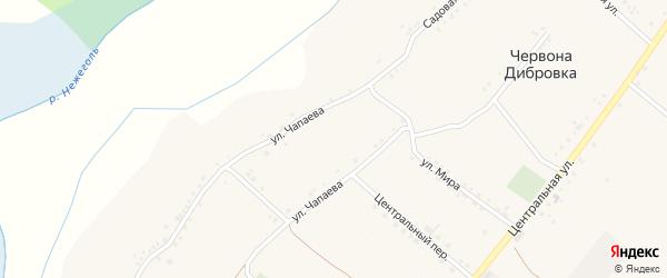 Центральный переулок на карте села Червоны Дибровки с номерами домов