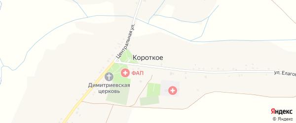 Центральная улица на карте Короткого села с номерами домов