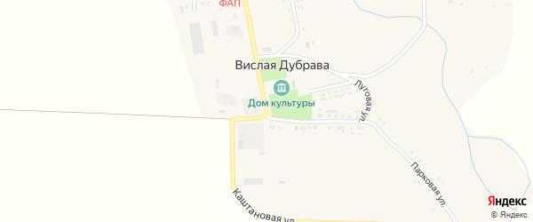 Каштановая улица на карте села Вислой Дубравы с номерами домов