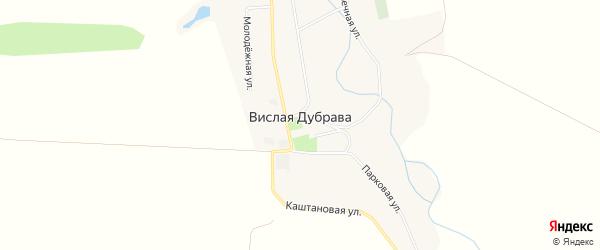 Карта села Вислой Дубравы в Белгородской области с улицами и номерами домов