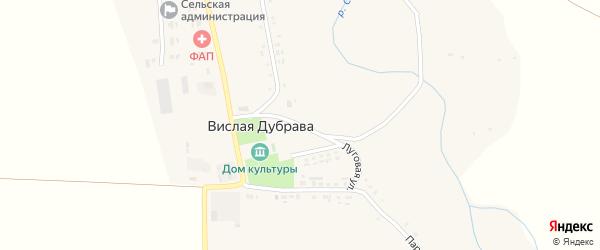 Луговая улица на карте села Вислой Дубравы с номерами домов