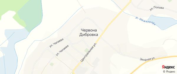 Карта села Червоны Дибровки в Белгородской области с улицами и номерами домов