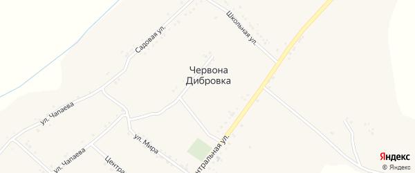 Улица Мира на карте села Червоны Дибровки с номерами домов