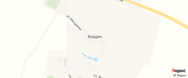Улица Мичурина на карте хутора Кощина с номерами домов