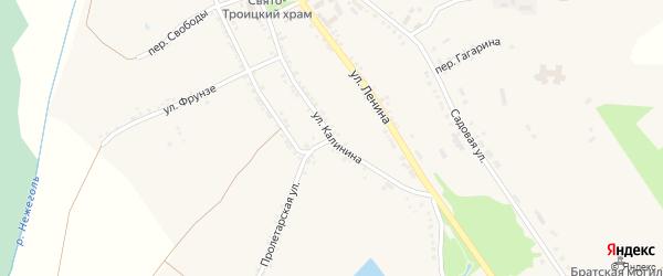 Улица Калинина на карте Большетроицкого села с номерами домов