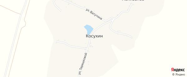 Улица Ватутина на карте хутора Косухина с номерами домов