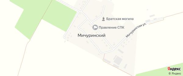 Мичуринская улица на карте Мичуринского поселка с номерами домов