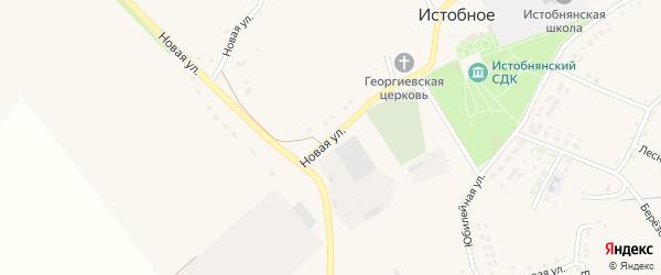 Новая улица на карте Истобного села с номерами домов