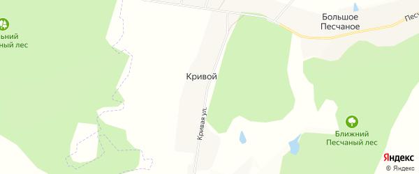 Карта Кривого хутора в Белгородской области с улицами и номерами домов