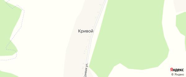 Кривая улица на карте Кривого хутора с номерами домов