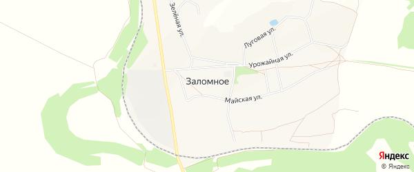 Карта Заломного села в Белгородской области с улицами и номерами домов
