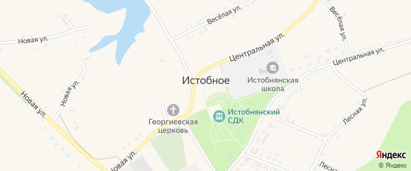 Веселая улица на карте Истобного села с номерами домов