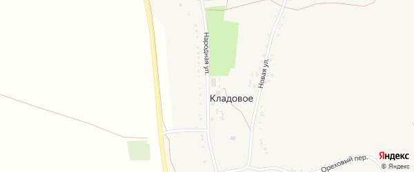 Народная улица на карте Кладового села с номерами домов