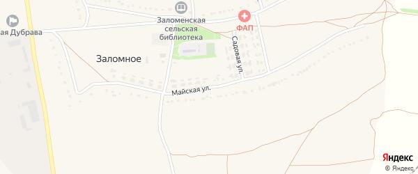 Майская улица на карте Заломного села с номерами домов