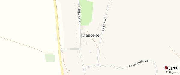 Светлый переулок на карте Кладового села с номерами домов