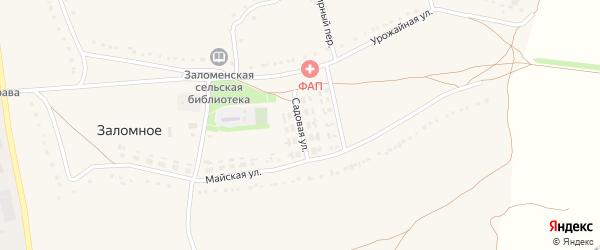 Садовая улица на карте Заломного села с номерами домов