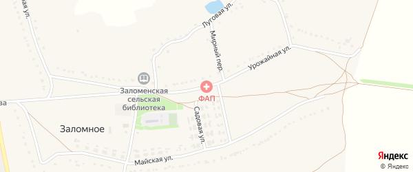 Урожайная улица на карте Заломного села с номерами домов