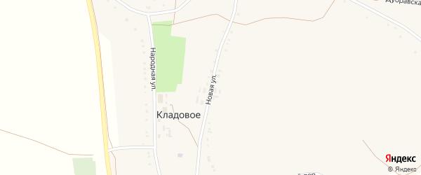 Новая улица на карте Кладового села с номерами домов
