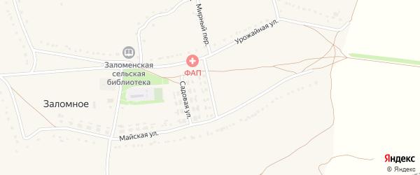 Цветочная улица на карте Заломного села с номерами домов