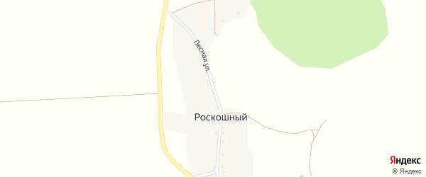 Лесная улица на карте Роскошного хутора с номерами домов