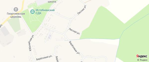 Лесная улица на карте Истобного села с номерами домов