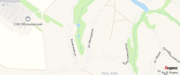 Улица Мичурина на карте села Яблоново с номерами домов