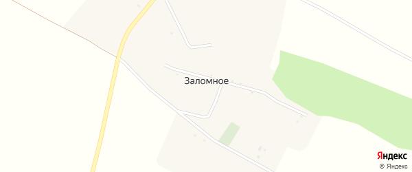Широкая улица на карте Заломного села с номерами домов