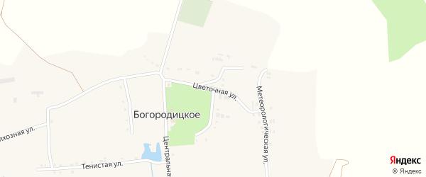 Цветочная улица на карте Богородицкого села с номерами домов