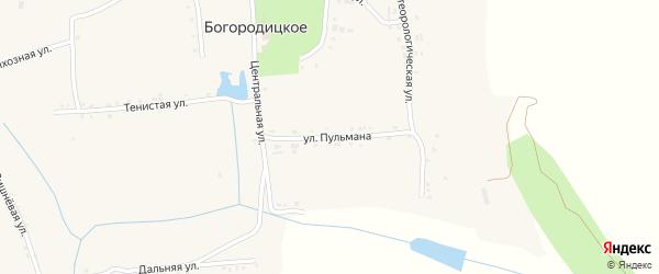 Центральная улица на карте Богородицкого села с номерами домов