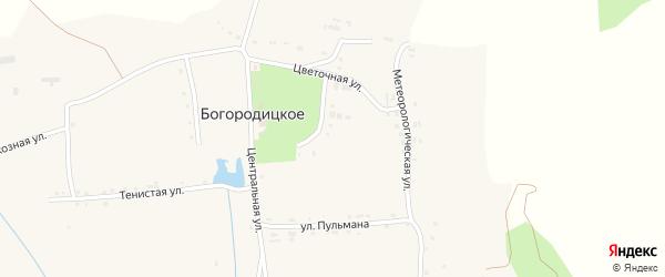Луговая улица на карте Богородицкого села с номерами домов