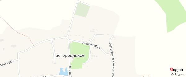 Зеленая улица на карте Богородицкого села с номерами домов