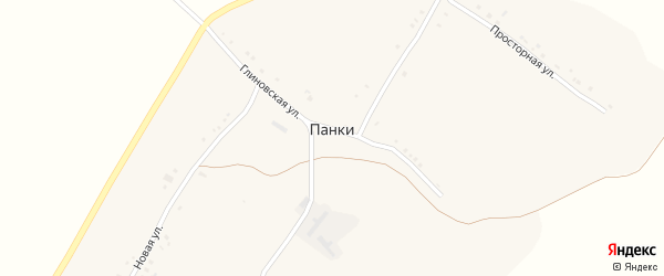 Новая улица на карте села Панки с номерами домов
