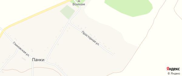 Просторная улица на карте села Панки с номерами домов