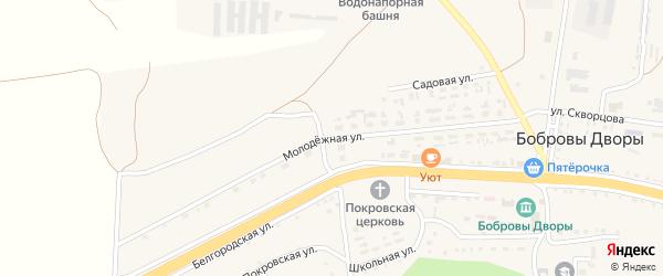 Молодежная улица на карте села Бобровы Дворы с номерами домов