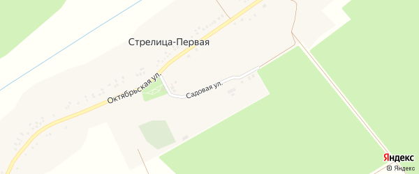 Садовая улица на карте села Стрелицы-Первой с номерами домов