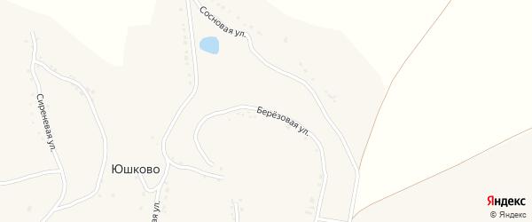 Березовая улица на карте села Юшково с номерами домов